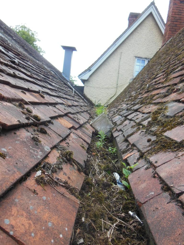 Roof Maintenance